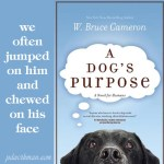 Excerpt from A Dog's Purpose and a Free Gift