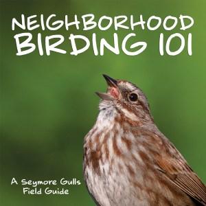 Neighborhood Birding 101