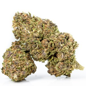 Wesley's Wish by East Fork Cultivars | Green Box