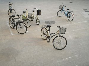 Bikes in Parking Lot