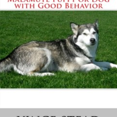 How To Stop Your Dog From Jumping Up On The Sofa Bed Plans Pdf Understand And Train A Alaskan Malamute Puppy Or