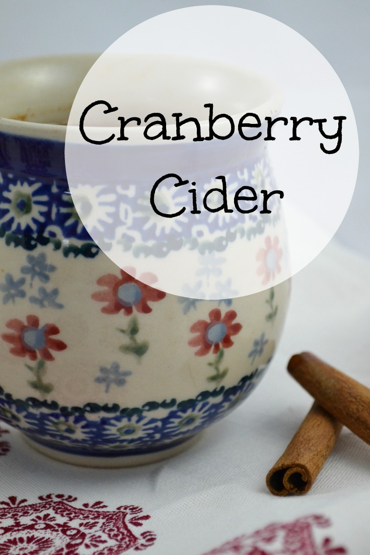 Cranberry Cider -- a recipe for a delicious warm drink that's perfect for chilly weather!