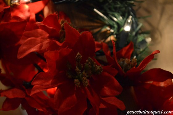 poinsettias, Christmas decorations