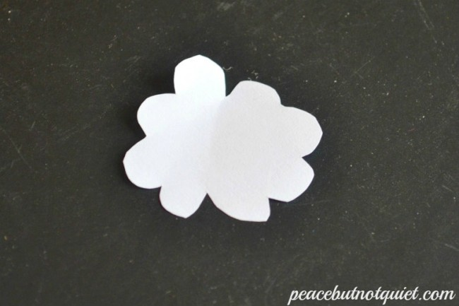 wacky shamrock-watermarked