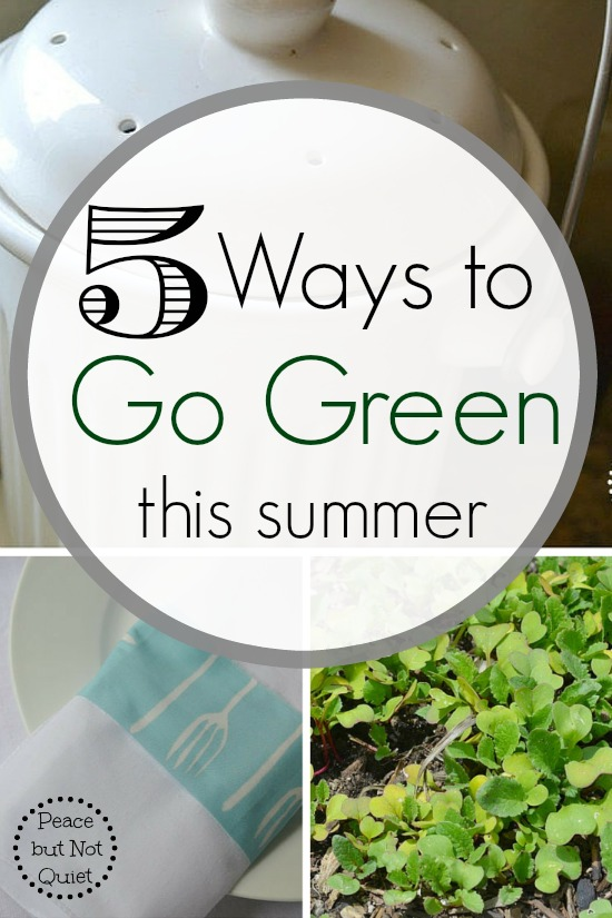 Looking for simple, easy ways to go green? Try one of these -- #2 is good for so many reasons!