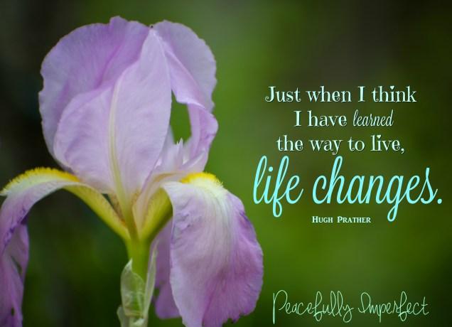 Life changes iris