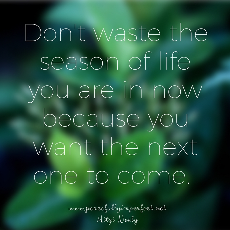 dont-waste-the-season-of-life-now