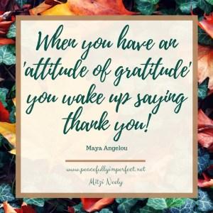 attitude-of-gratitude-3