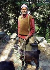 Gentle Goat Herder