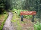 Trail to Mt. Mitchell Summit