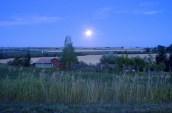 Evening in Bozeman