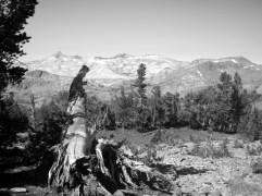 """""""Ansel Adams"""" of the Sierras"""
