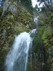 Trail-side Falls