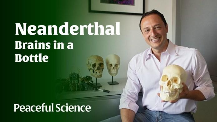 Alysson Muotri: Neanderthal Brains in a Bottle