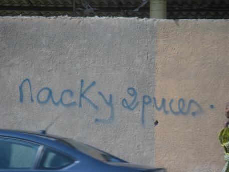https://i0.wp.com/peacefulworld.mondoblog.org/files/2013/04/maky-2-puces1.jpg