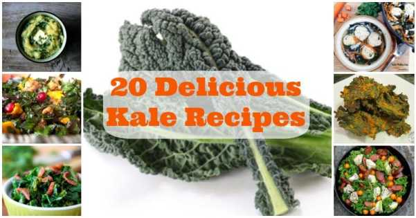20 Delicious Low Carb Kale Recipes | Peace Love and Low Carb