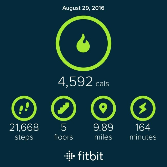Fit Bit Results for 8/29 | Peace Love and Low Carb