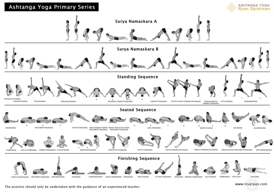 Photo credit to: http://www.trueryan.com/wp-content/uploads/2010/12/Ashtangachart-RyanSpielman.jpg