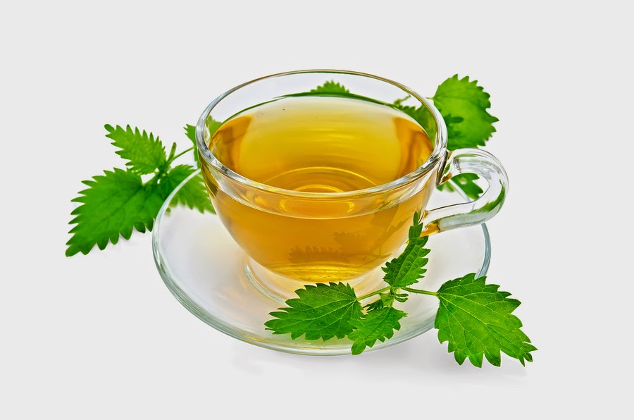 Nettle for Endometriosis