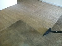 Professional Carpet Cleaning | Peaches'N Clean