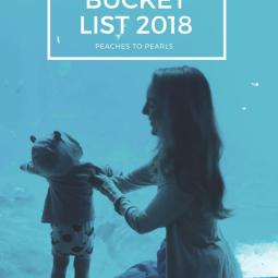Georgia Aquarium Bucket List 2018