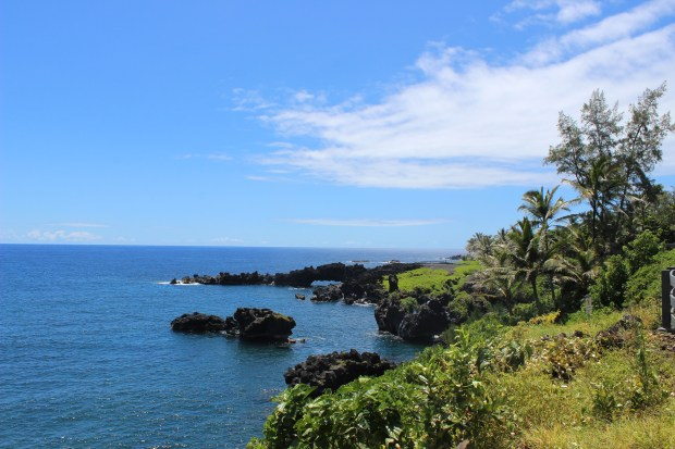 Road to Hana 17