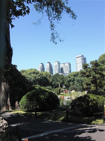 Jardin Japones 5