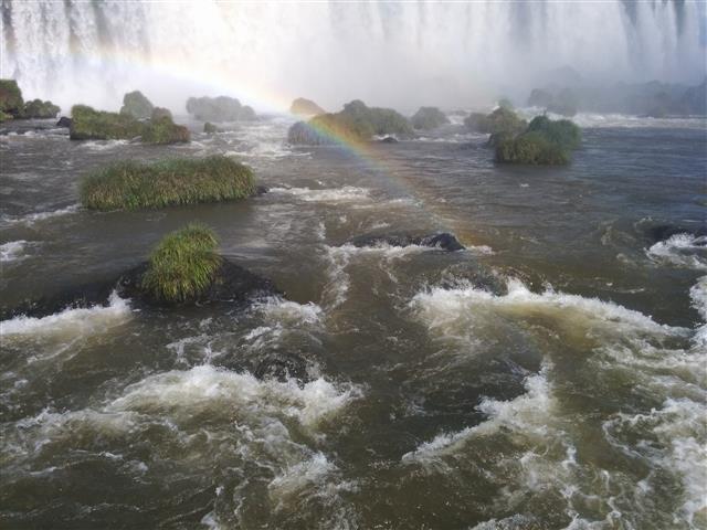 Brasilian Falls 26