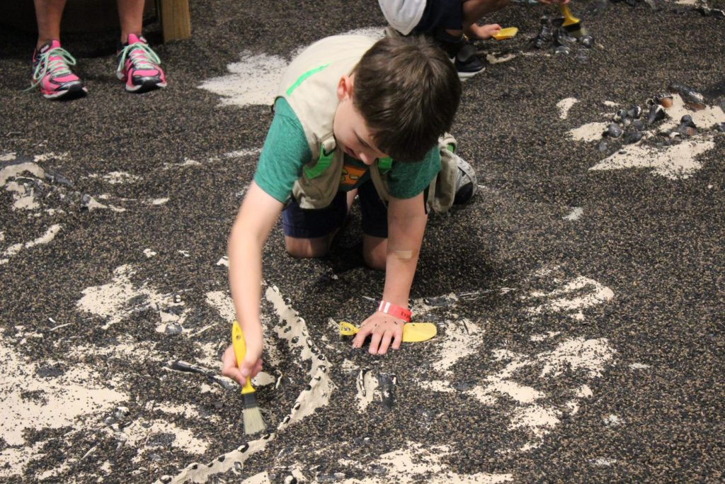 Picture of boy dusting fossil at Orlando Science Center