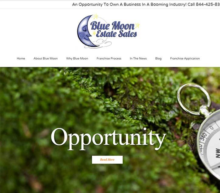 Franchising Website Design