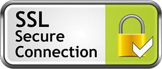 ssl secure connection logo