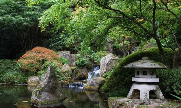 Shelly Blankman – Japanese Tea Garden