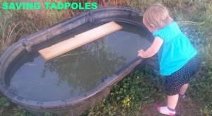 SAVING TADPOLES