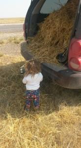 straw truck