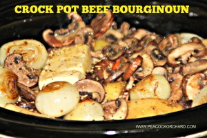 Crock Pot Beef Bourguignon with updated review of Chateau Maine D'Arman 2010 wine
