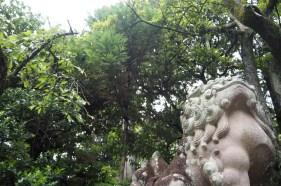 岡崎神社 more trees