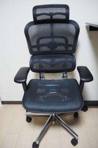 Ergohuman Chair Front