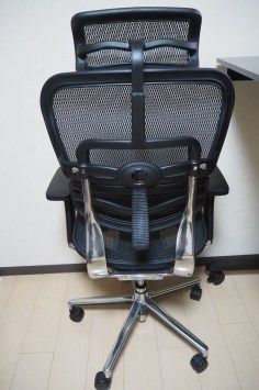 Ergohuman Chair Back