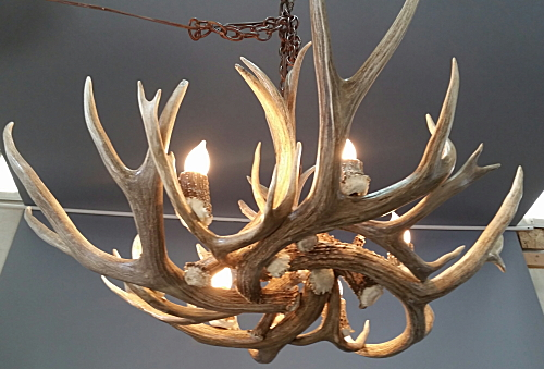 Farmhouse antler chandelier medium 6 lights the peak antler co m pinecone mule deer antler chandelier aloadofball Images
