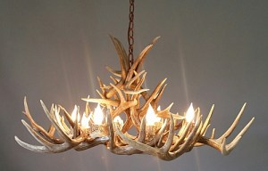532-S white tail antler chandelier