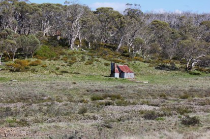Four Mile Hut - the toilet is up in the tree line