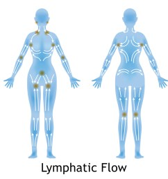 woman s lymphatic massage diagram treatment of the swelling [ 1074 x 1063 Pixel ]