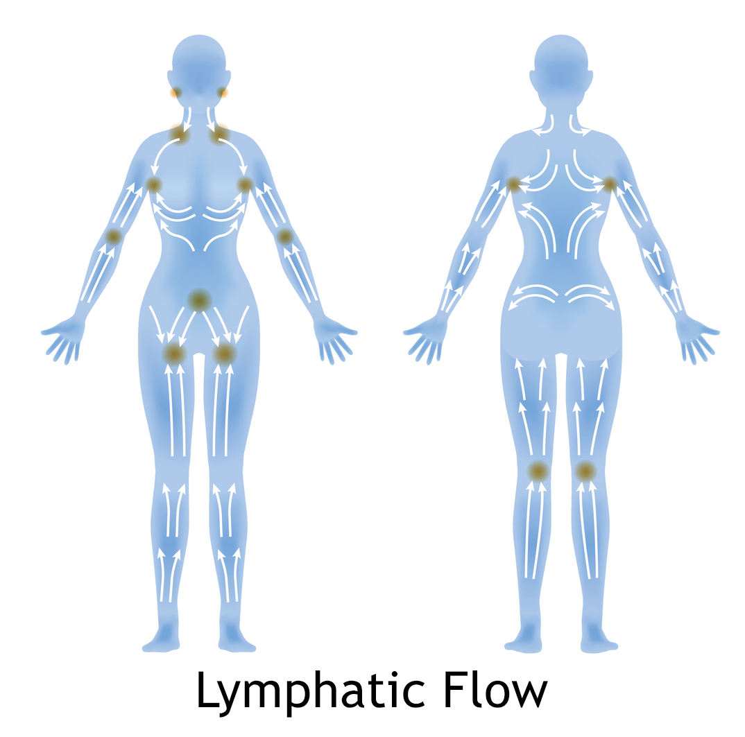hight resolution of  woman s lymphatic massage diagram treatment of the swelling