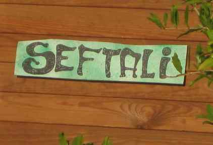 Seftali_01