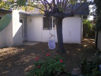Before- tree with problem roots   Peak Landscape Design