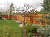 Privacy Fence Landscaping Project PDF Download ...