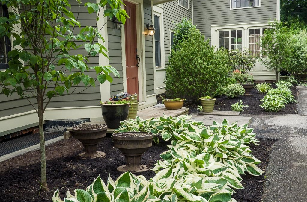 Peak Landscaping & Design and TruGreen Providing Customized Service