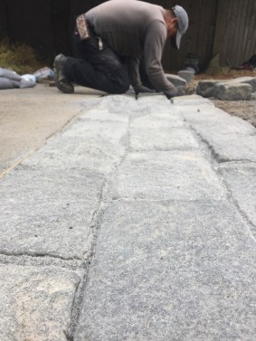 Last step: An addition of Polymeric sand to seal the joints