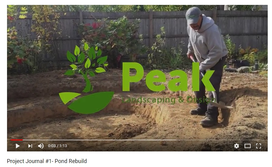 Project Journal #1 Video – Pond Rebuild