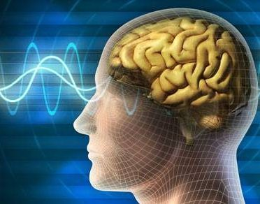 Nootropic Cycling